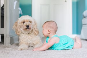 5 Tips for involving kids in your pet's upkeep