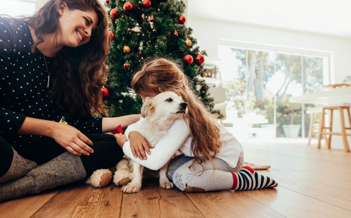 Is it a good idea to give pets as gifts?